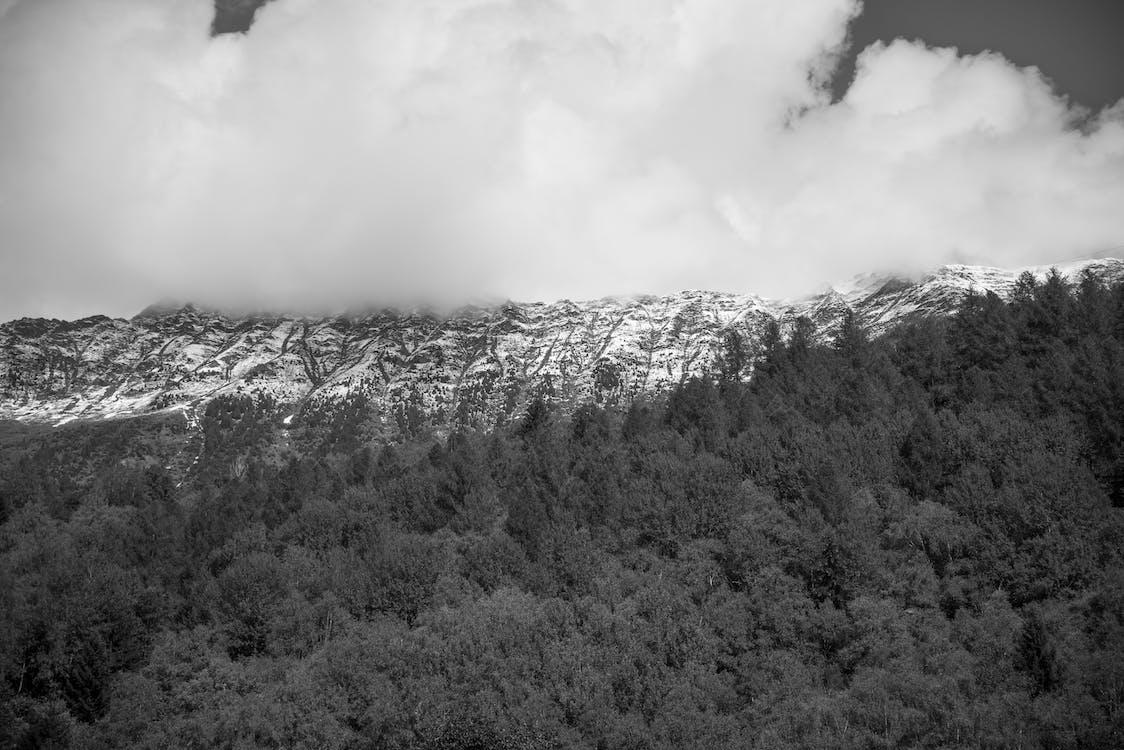 černobílý, hory, jednobarevný
