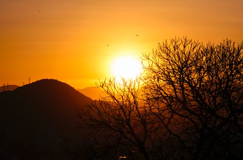 Free stock photo of bruno scramgnon fotografia, golden, golden hour
