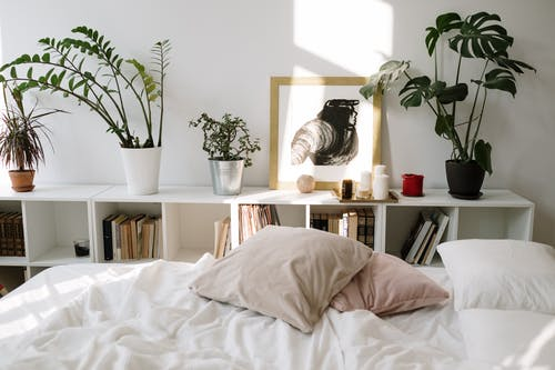 White Bed Linen Near Green Potted Plant