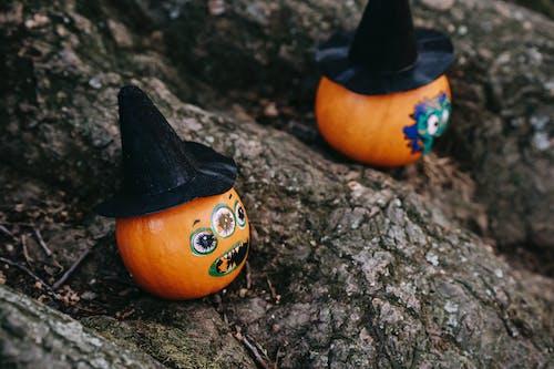 Funny Halloween pumpkins on tree roots