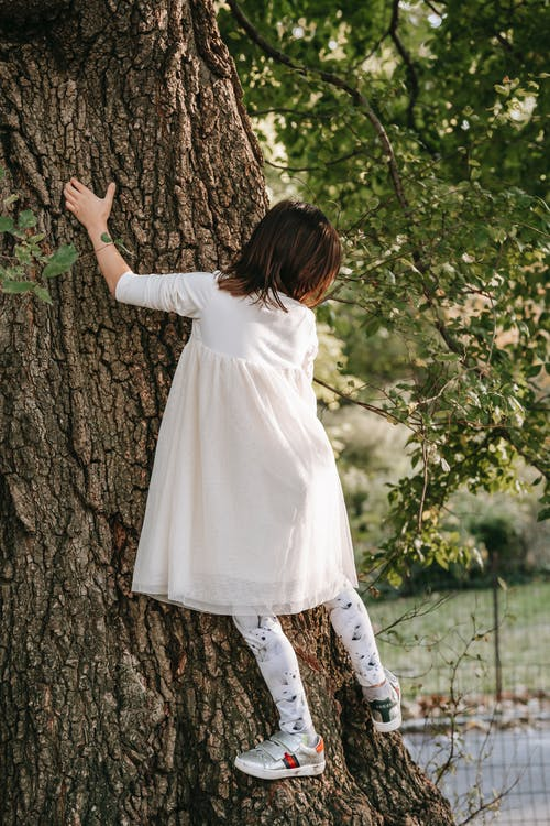 Back view full body of faceless little girl climbing on tree with green foliage while spending time in park