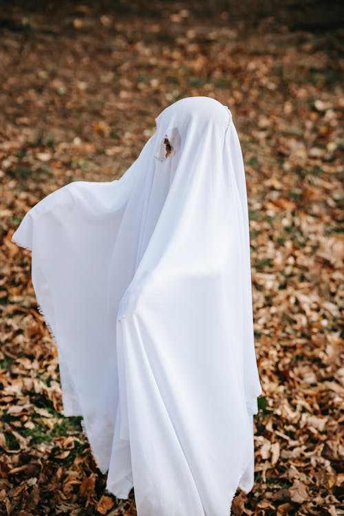 Child in costume of ghost