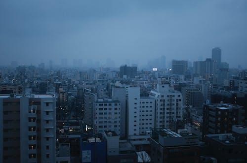Fog Over City Buildings