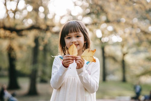 Happy preschool girl in casual clothes showing fallen leaves while spending weekend in countryside