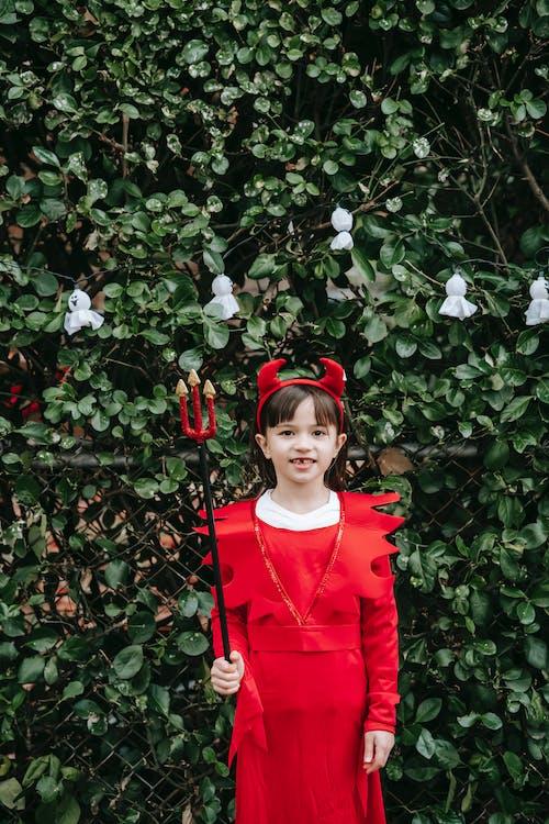 Fotos de stock gratuitas de abucheo, adorable, al aire libre, alegre