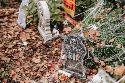 Yard decorated with gravestones on Halloween