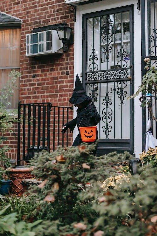 Gratis stockfoto met 31 oktober, bedacht, buitenkant, buurt