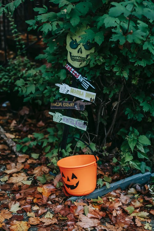 Fall garden with Halloween decorations