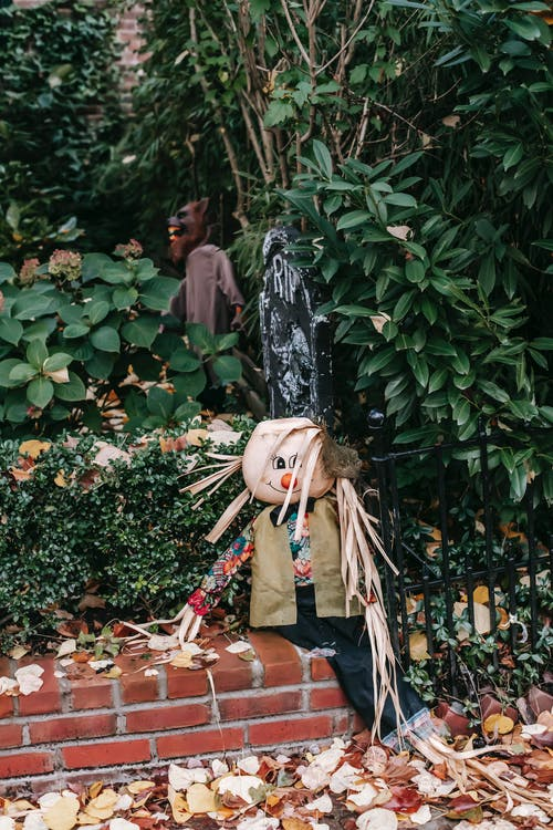 Scarecrow in trousers and vest placed on red brick fence of garden with faux tombstone for Halloween celebration in daylight