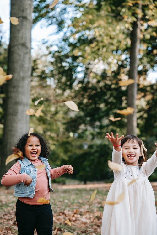 Delighted little multiethnic girls in casual wear throwing yellow fallen leaves while playing together in autumn park on clear day