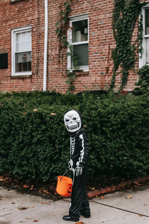 Person in Black and White Skeleton Costume Standing Near Green Plant