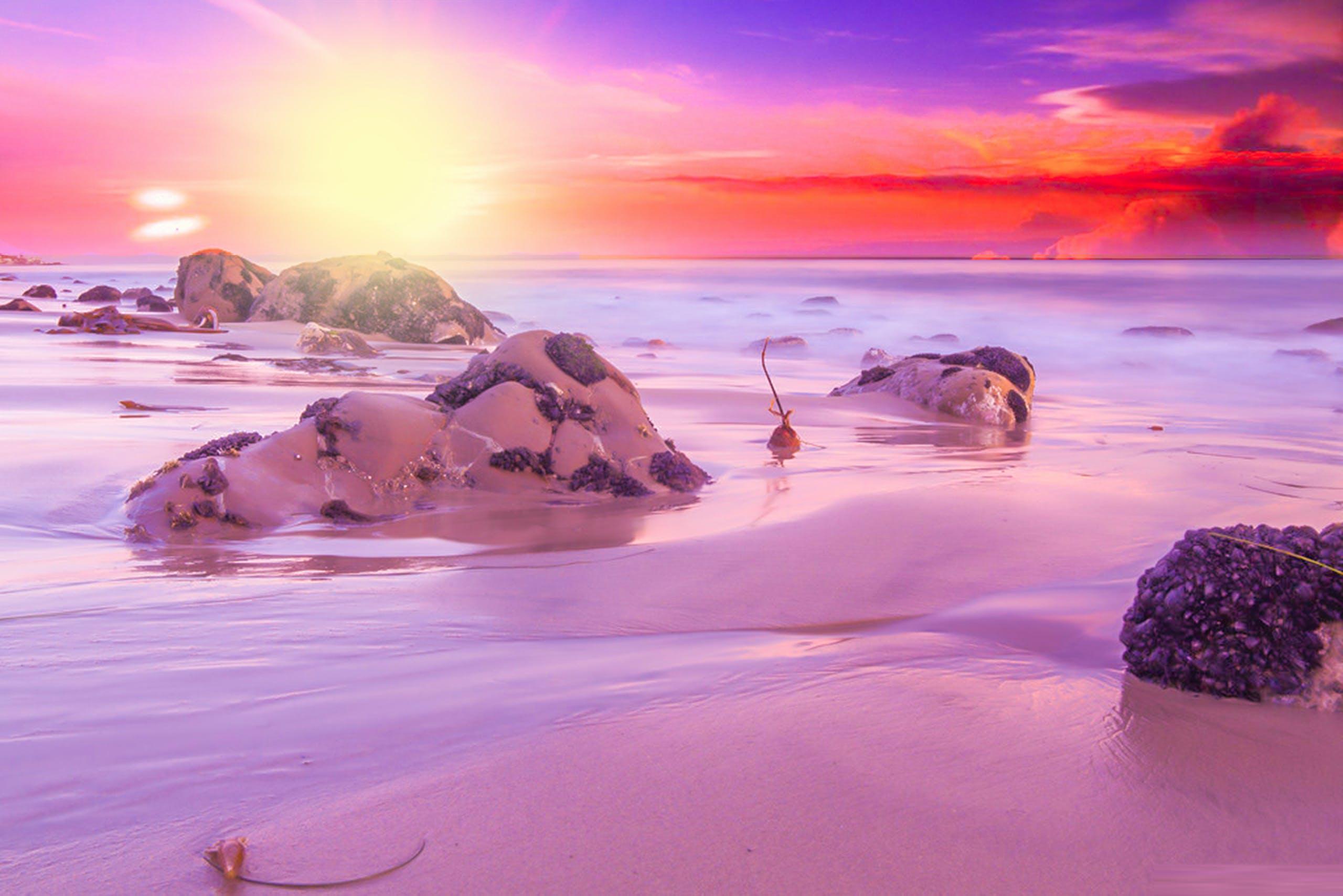 Free stock photo of bright, nature, scene, scenery