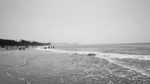 サーフィン, シースケープ, ビーチの無料の写真素材