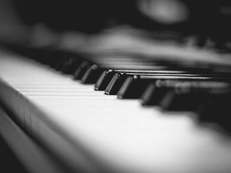 black grand piano gray scale photo 183 free stock photo