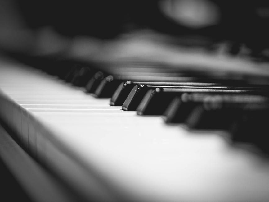 New free stock photo of black-and-white, piano, keyboard