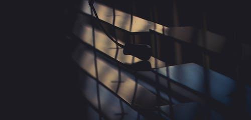 Бесплатное стоковое фото с жалюзи, легкий, снимок крупным планом, темный