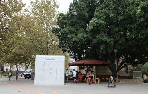 Kostenloses Stock Foto zu bäume, beschilderung, geschäft