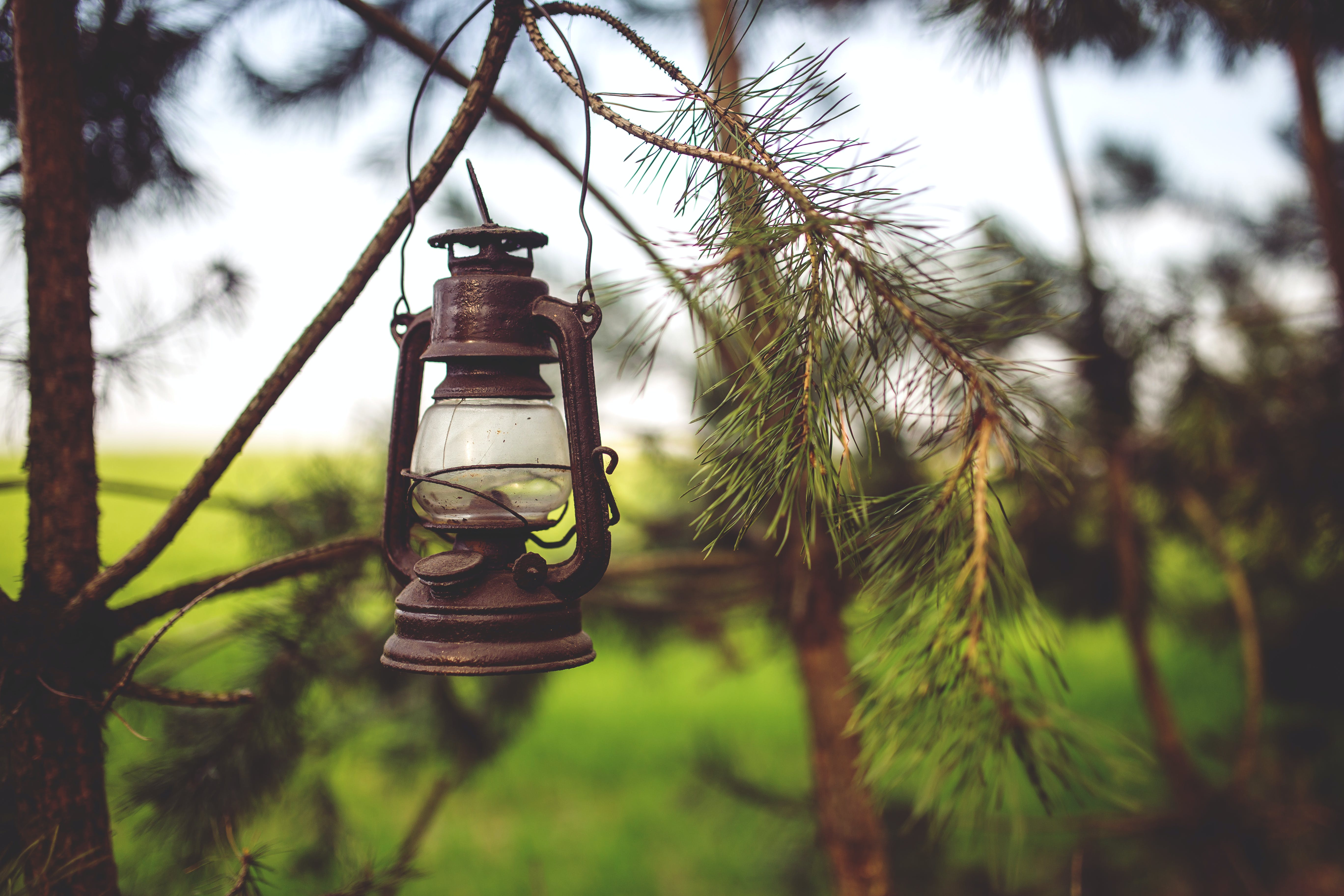 Kerosene lamp in the woods