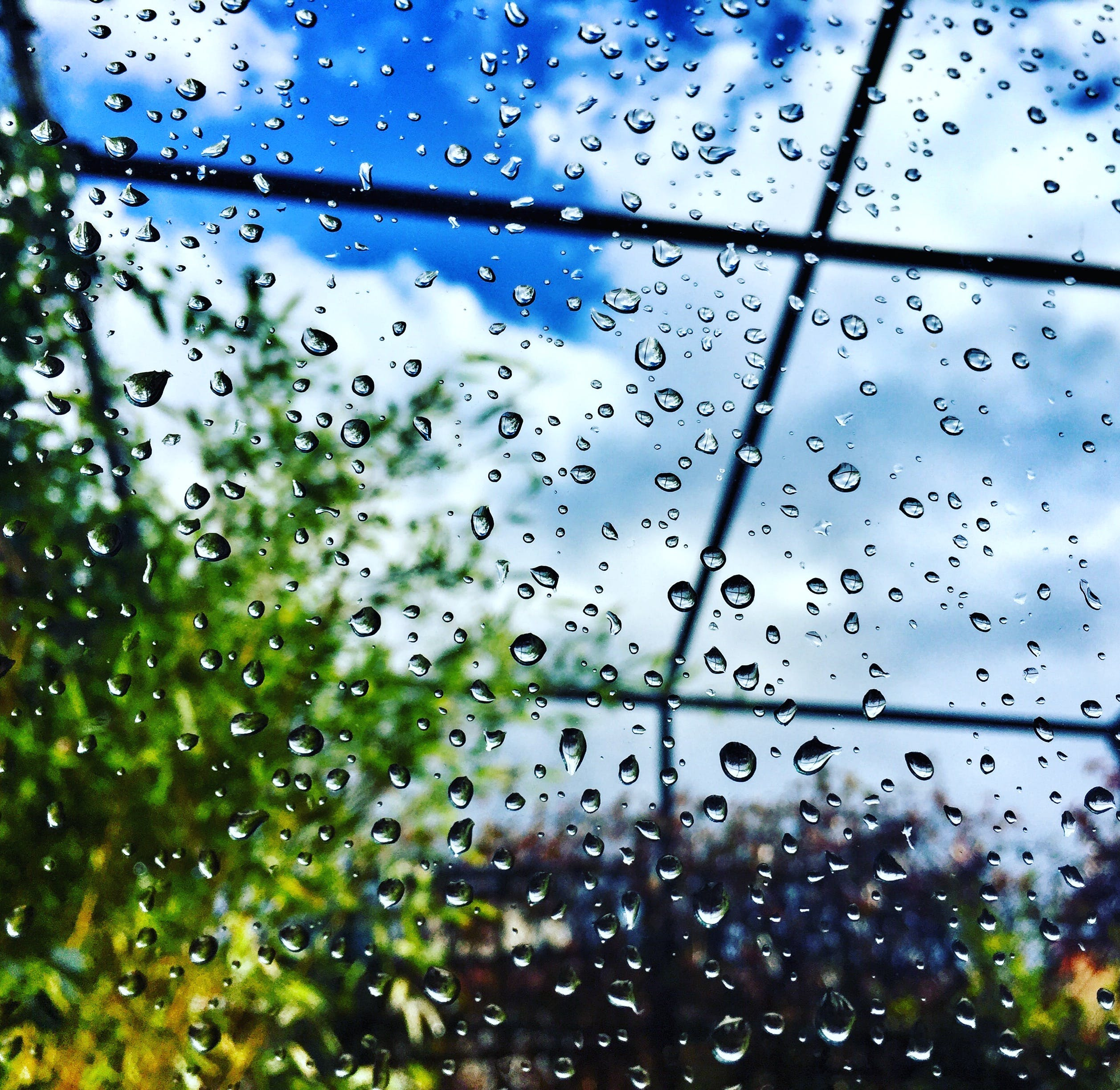 Water Dew Drop on Glass