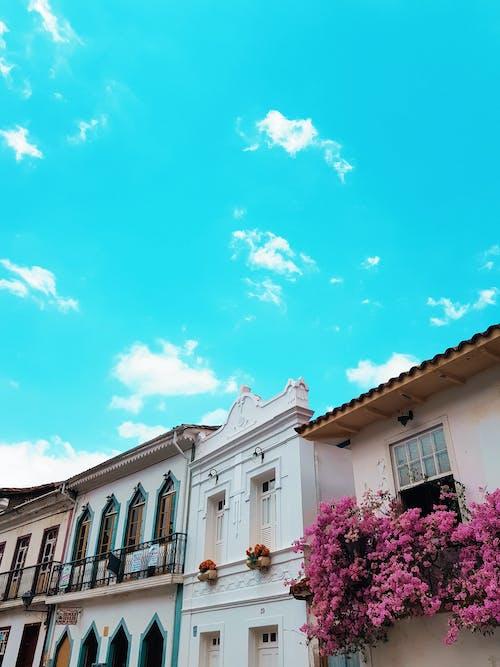 Ilmainen kuvapankkikuva tunnisteilla arkkitehtoninen, arkkitehtuuri, ikkuna, katu