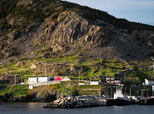 Бесплатное стоковое фото с берег, бухта португалия, ньюфаундленд