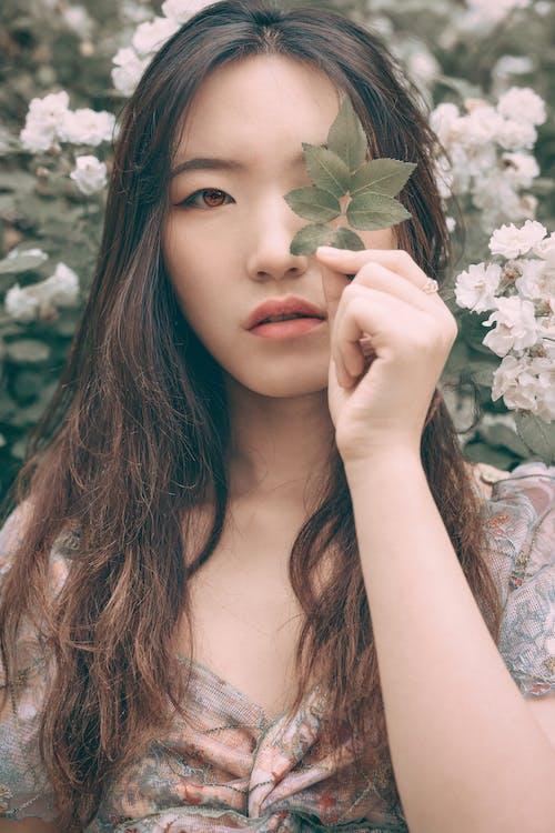 中國女孩, 人像攝影, 光鮮亮麗, 北京 的 免費圖庫相片