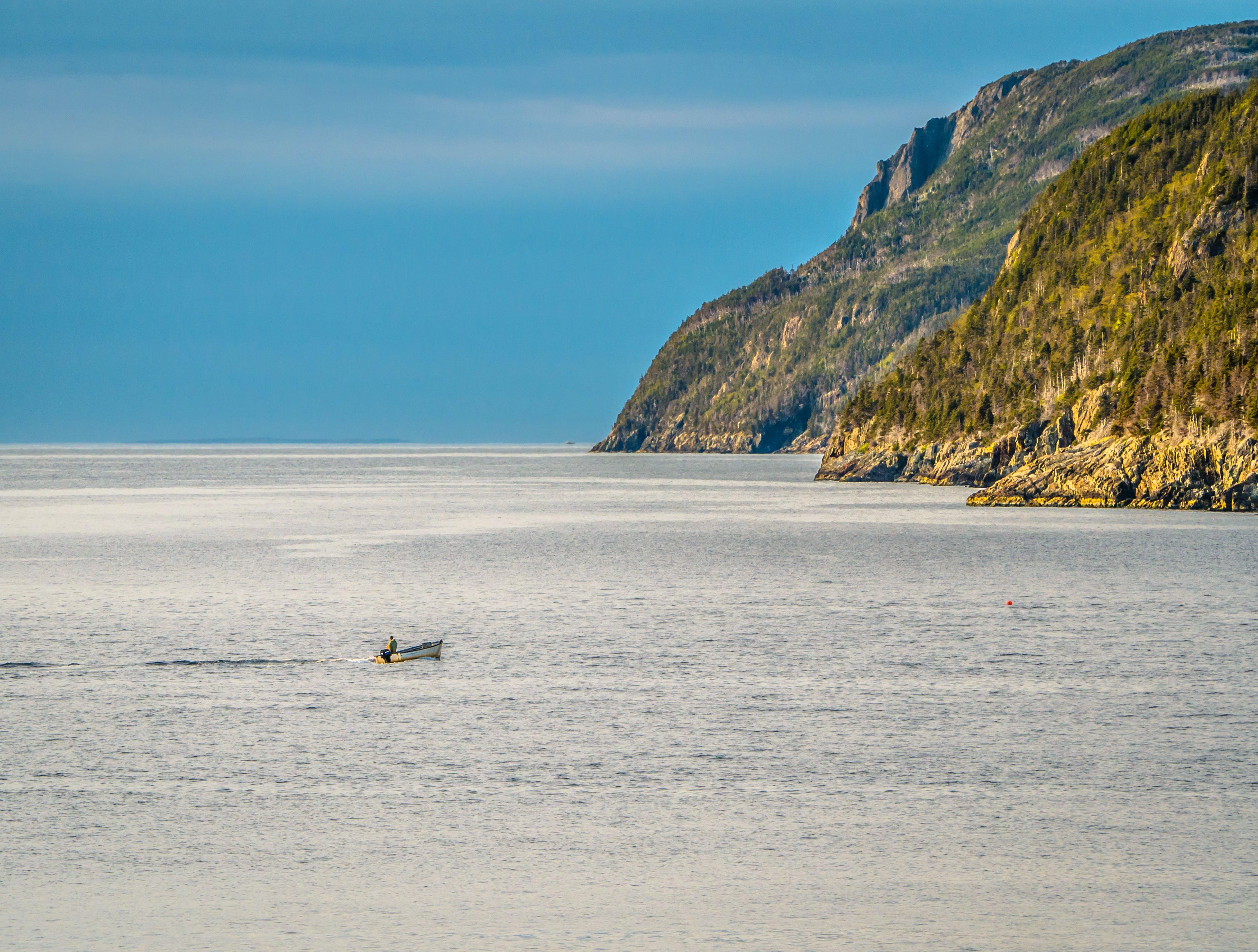 Free stock photo of boat, coast, newfoundland, ocean
