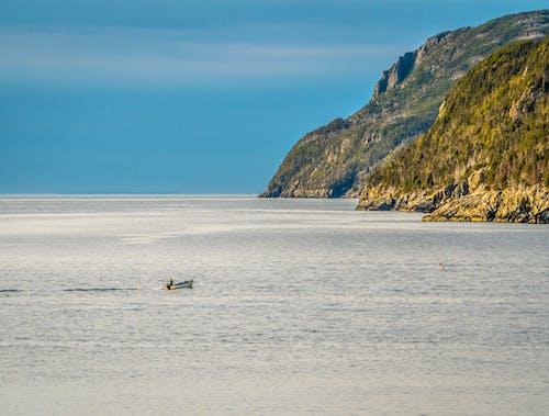 Бесплатное стоковое фото с берег, бухта португалия, лодка