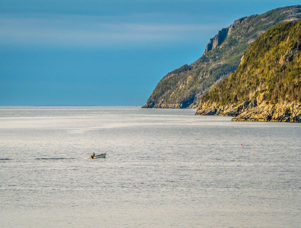 Free stock photo of boat, coast, newfoundland