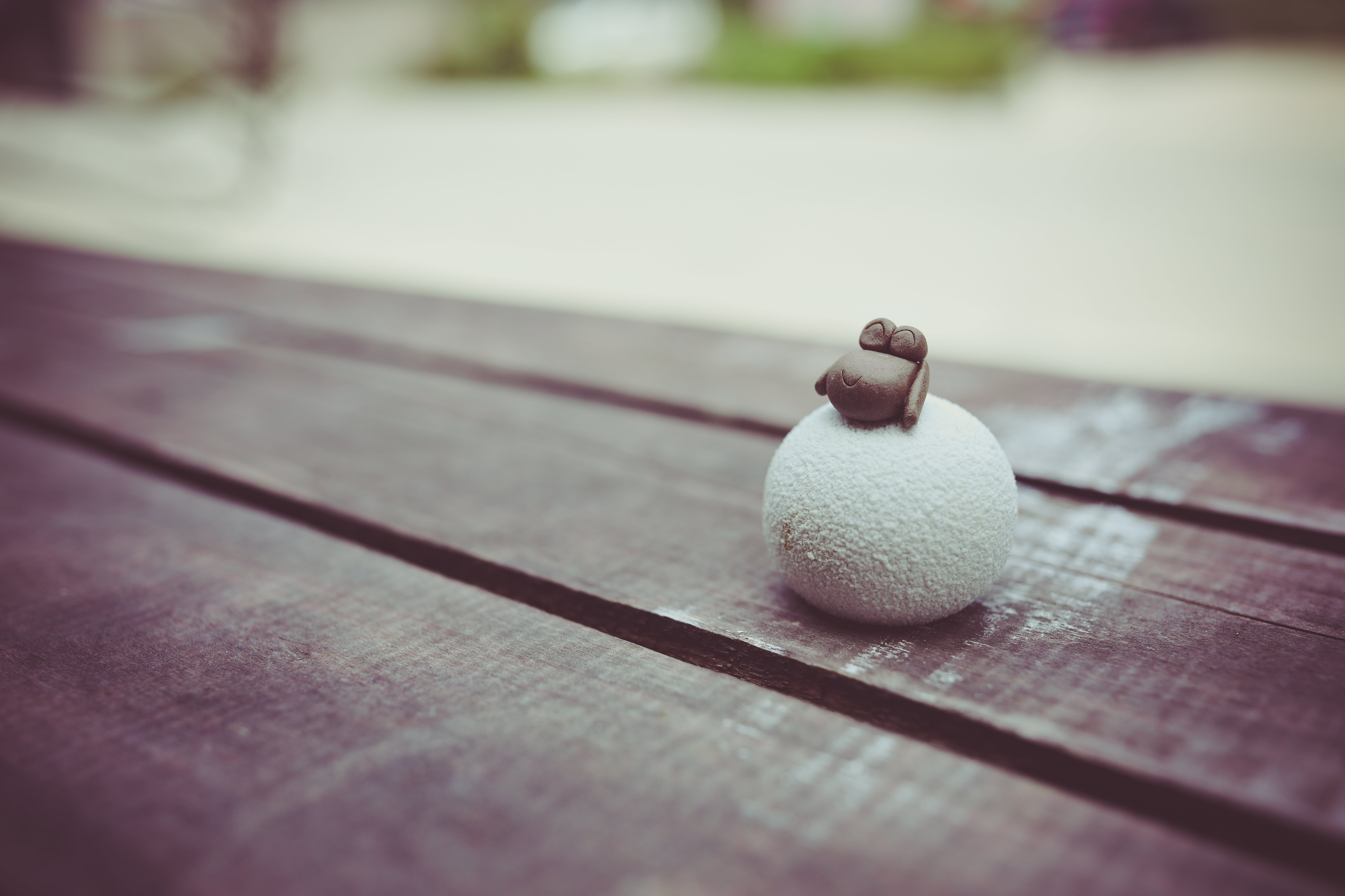 ball, macro, sheep