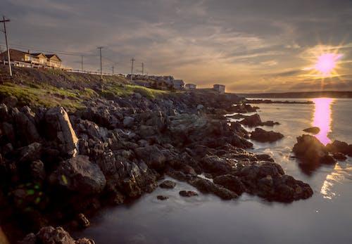 Бесплатное стоковое фото с берег, ньюфаундленд, остров белл