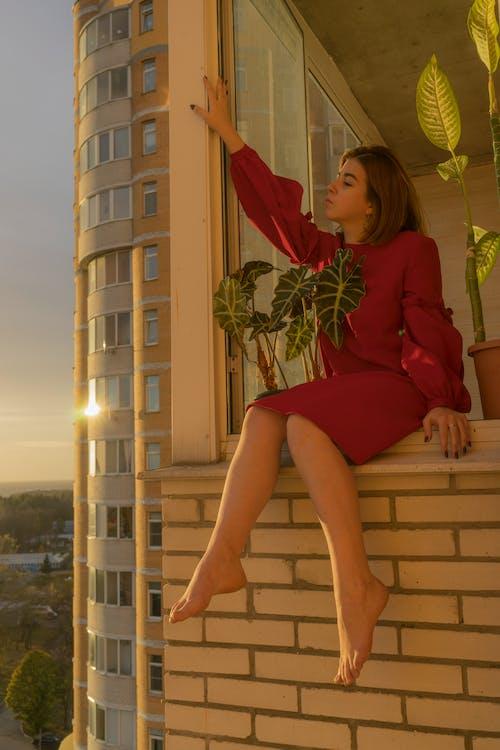 Fotos de stock gratuitas de al aire libre, alto, altura