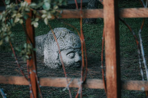 Weathered white stone statue of human head located on grassy ground behind wooden fence in park
