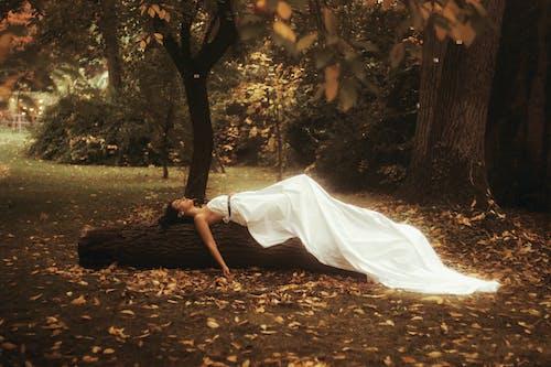 Foto d'estoc gratuïta de a l'aire lliure, amable, atractiu, bonic