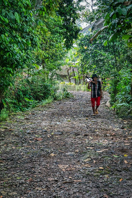 Full body of young Asian local male in casual clothes and hat walking on pathway amidst lush green trees with garden tools after working in plantation
