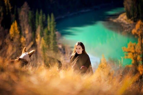 Gratis stockfoto met affectie, Aziatische vrouw, beest