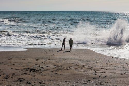 天性, 天空, 招手, 海 的 免费素材照片