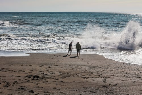 Free stock photo of beach, nature, ocean, people