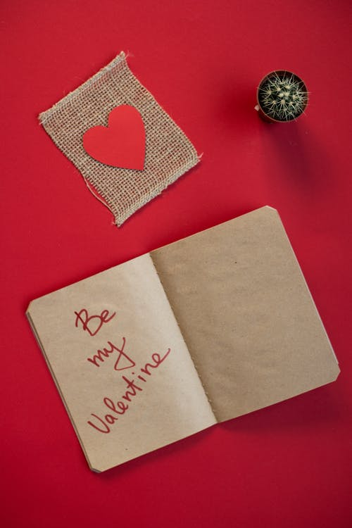 Notebook with inscription near heart and cactus