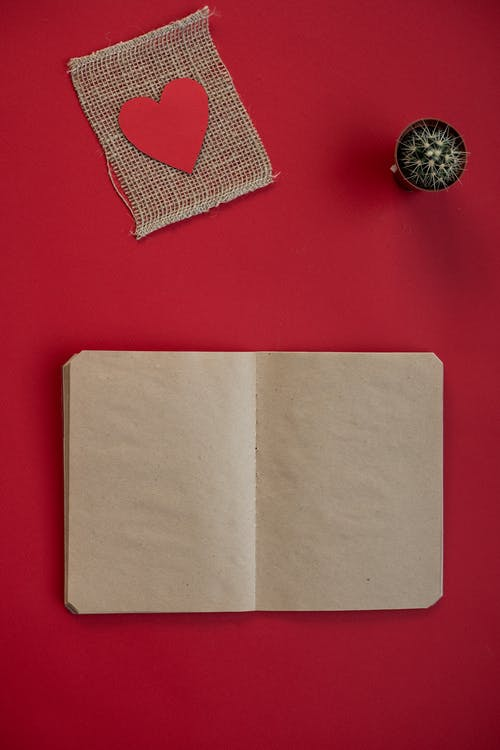 Top view of craft notepad and paper heart on burlap piece near potted cactus on red background