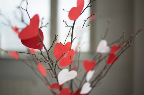 Paper hearts on twigs at home