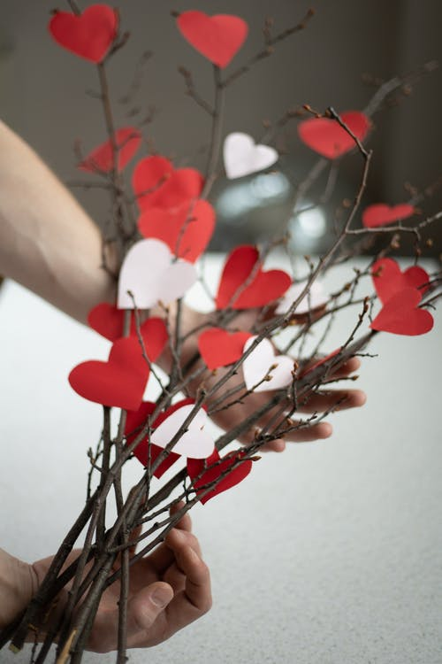 Crop anonymous male demonstrating bunch with twigs and cutout paper hearts in room
