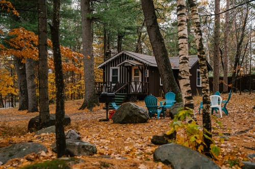 Cozy wooden house and chairs in autumn forest