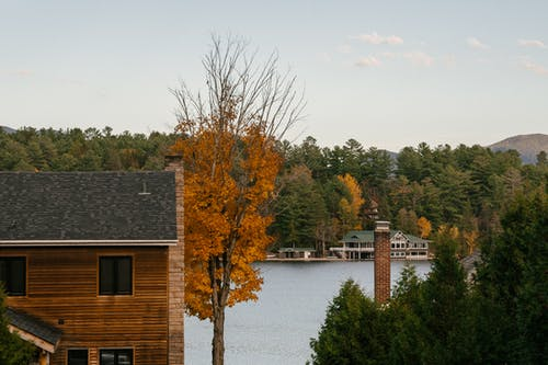 Wooden cottages on lake coast surrounded by lush autumn forest