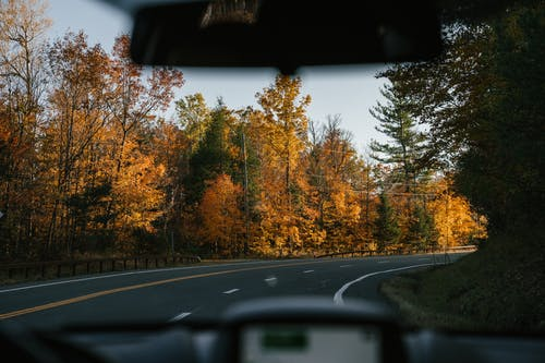 Automobile driving through autumn forest during road trip