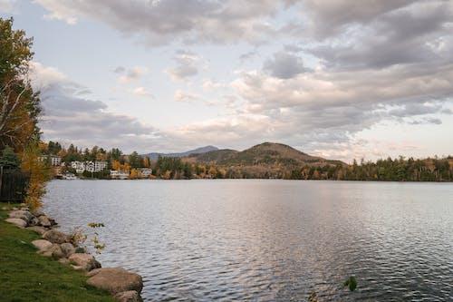 Fotos de stock gratuitas de a orillas del lago, al aire libre, árbol, armonía