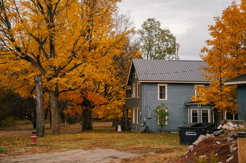 Cottage with triangular roof surrounded by tall trees with vibrant yellow leaves in autumn