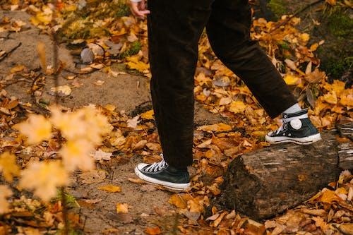 昼間に森の中を歩く顔のない人