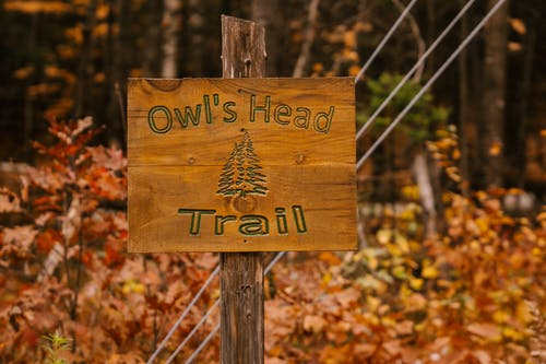 Signboard in autumn forest in daytime