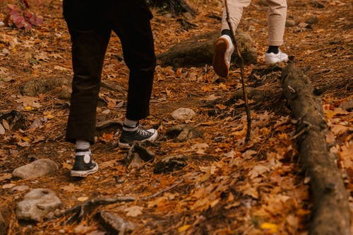 Crop unrecognizable persons walking on fallen yellow leaves in forest